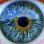 Yang Dapat Dilihat Mata Itulah Yang Tiada Sebenarnya